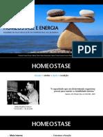 Homeostase e Energia (PDF)