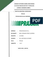 Produccion Gas Carbonico