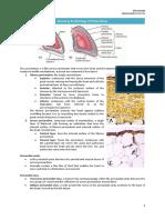 Anatomy & Histology of Pericardium