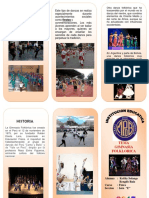 TRIPTICO-gimnasia-folklorica
