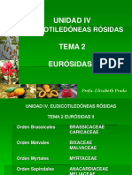 Unidad IV Tema 2 Eurosidas Malvidas