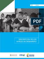 Definicion Niveles de Desempeño.pdf