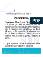 Silicona Presentacion General.ppt