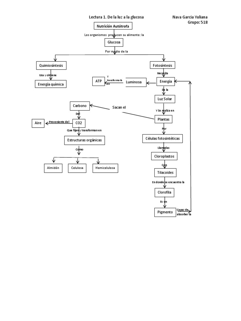 Ayuda con calcular metabolismo basal vitonica
