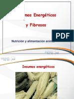 Clase 10 Insumos Energeticos Fibrosos UCSUR