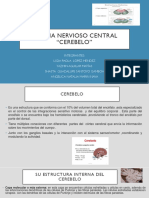 Sistema Nervioso Central CEREBELO Tema Cinco .