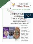Monografia Expociencia 2017 - Quimica