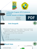 10 Masalah Program UPTD Puskesmas Batujaya