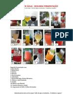 Kefir de água - SEGUNDA FERMENTAÇÃO..pdf