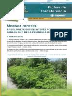 020-moringa-v3-1476963334.pdf