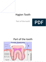 Hygien Tooth