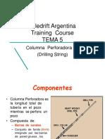 TEMA 5 - Columna de Perf. 1