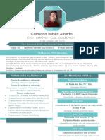 Curriculum Vitae Alberto Carmona 2017