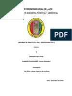 Informe Final de Practicas Pre-profecionales II