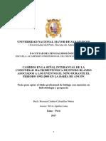 Resumen Tesis Rossana Cabanillas