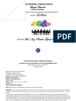 PLANIFICACION DE LA UNIDAD EL PANEL (Ultima modificacion).docx