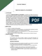 Plan de Trabajo Maraton de La Solidaridad 2017..