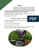 Proyecto Exportacion de Oregano