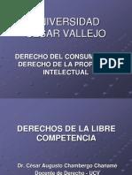 S. 07 - D_ de La Libre Competencia