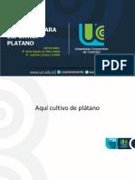Plantilla Institucional Presentaciones (002) (1)