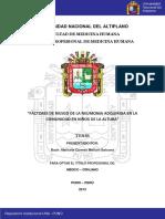 Molluni_Balcona_Maricela_Carmen.pdf
