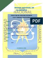 Ecologia Informe de La Planta de Tratamiento El Milagro.