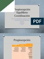 Propiocepción-Equilibrio-Coordinación.pdf