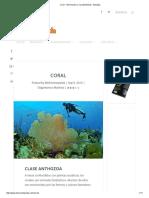 Coral - Información y Características - Biología