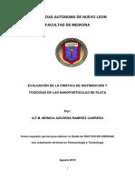 19871.pdf