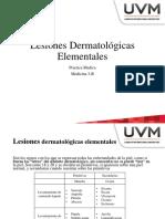 Lesiones Dermatologicas Capitulo 2 [Lecciones de dermatologia - Amado Saul]