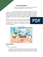 CICLOS BIOGEOQUIMICOS (1)