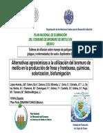 2.1 Desinfeccion de Suelos en La Produccion de Fresa (Lopez)
