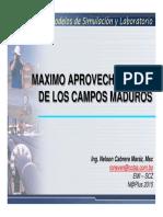 MAXIMO APROVECHAMIENTO DE LOS CAMPOS MADUROS, Modelos de Simulación y Laboratorio, Nelson Cabrera, 2015.pdf