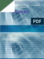 WARREN CARDENAS G. - CASO LA PISTOLA DE AGUA.pdf