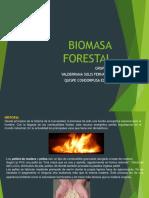 Biomasa Residos de Madera