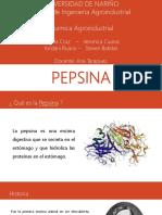 Diapositivas de Pepsina