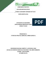 289486682-Componente-Practico-Jorge-Enrique-Hinestroza.docx