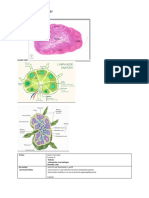 immunology usmle hsu notes.pdf