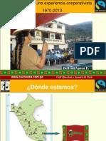 present._institucional_cecovasa_2013.pdf