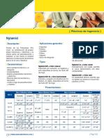 Nylamid_Levinson.pdf