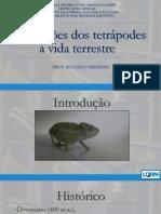 Adaptações Dos Tetrápodes à Vida Terrestre