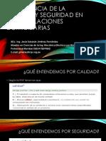 CALIDAD Y SEGURIDAD.pdf