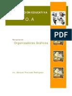 Organizadores+Graficos+1