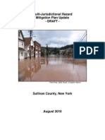 2010 Hazard Mitigation Plan DRAFT