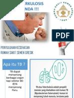 Penyulyhan TB