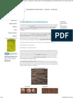 Hidrocarburos No Convencionales - Shale en Argentina - Iapg