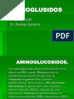 Aminoglucosidos.