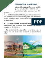 La Contaminacion Del Medio Ambiente  - Tipos de contaminacion