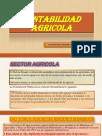 1.-CONTABILIDAD-AGRICOLA.pdf