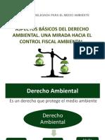 Caracteristicas Del Derecho Ambiental